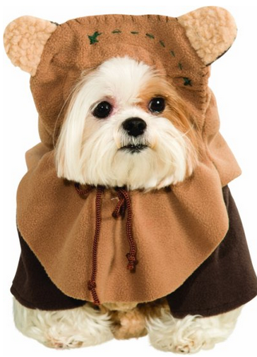 Star Wars ewoks costume