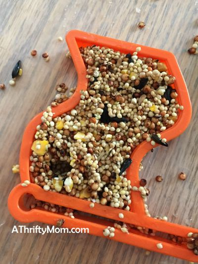diy birdfeeder, summer boredom buster idea.  birdseed, birdfeeder. diy craft,  kids craft, summer. inexpensive craft idea. thrifty craft idea