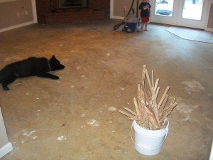 DIY Concrete Stained flooring