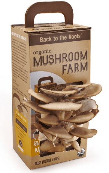 how to keep sliced mushrooms from turning brown